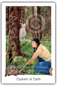Explorer of Earth Gaian Tarot